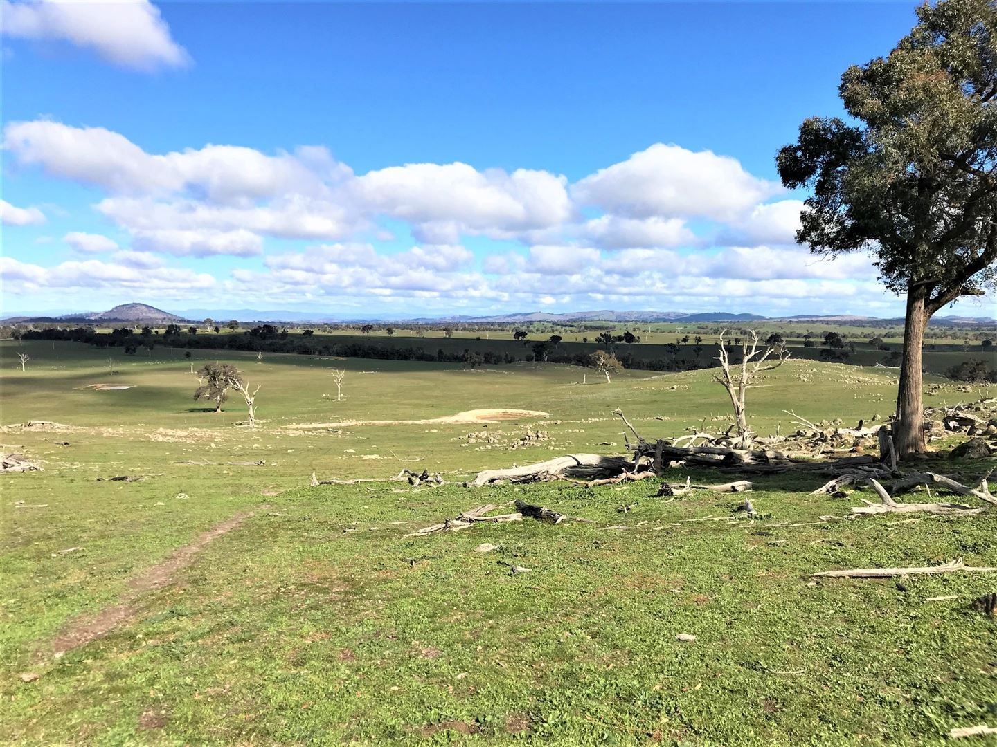 1174 Lachlan Valley Way, Yass NSW 2582, Image 1