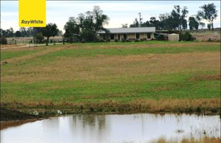Picture of Delungra NSW 2403