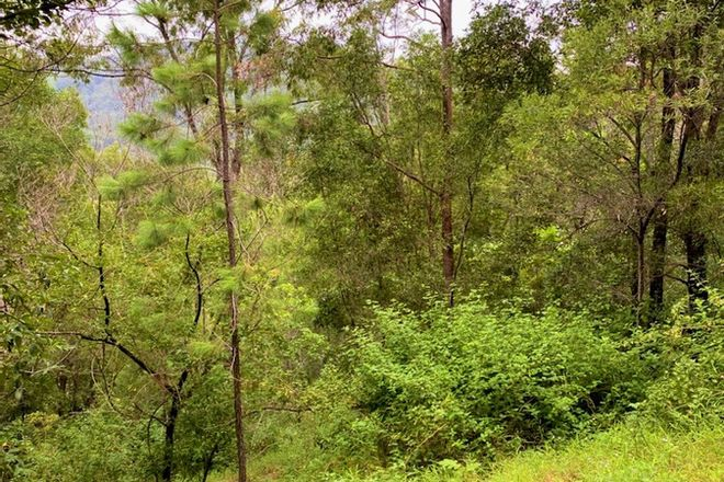 Picture of Lot 2 Chilcotts Road, CHILLINGHAM NSW 2484