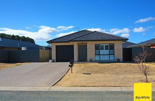 Picture of 7 Deniston Circuit, Bungendore NSW 2621