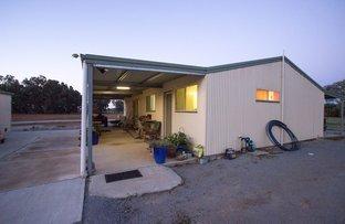 123 Trungley Hall Road, Temora NSW 2666