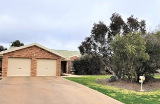 Picture of 13 Hillview Place, Leeton NSW 2705