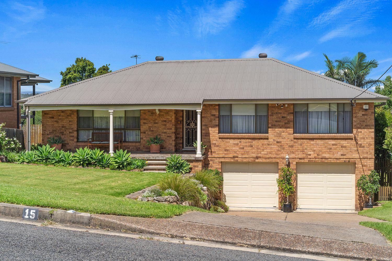 15 Wallis Street, East Maitland NSW 2323, Image 0