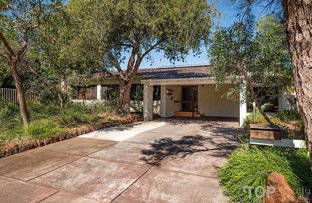 Picture of 32 Cotton Crescent, Bull Creek WA 6149