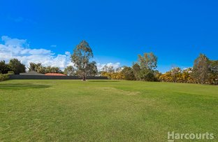 Picture of 16 Morrisby Street, Upper Caboolture QLD 4510