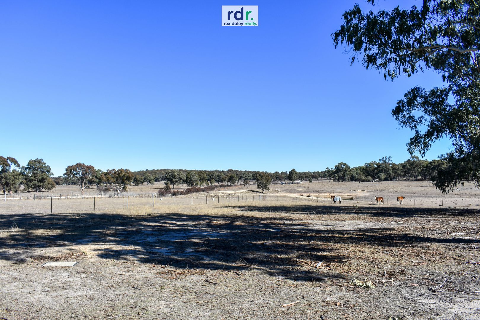 1178 Moredun Dams Road, Inverell NSW 2360, Image 1
