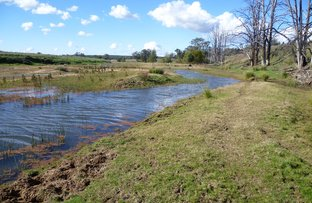 Piambra Road, Binnaway NSW 2395