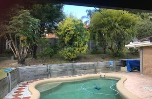 Picture of 19 Lismore Drive, Helensvale QLD 4212