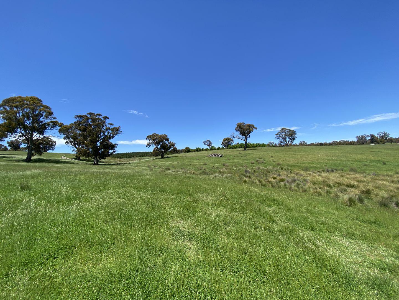 Beaconsfield Road, Oberon NSW 2787, Image 2