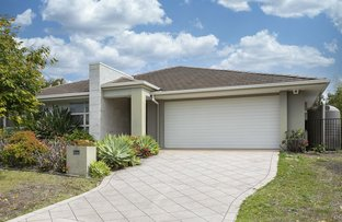 Picture of 17 Hollow Crescent, Narangba QLD 4504
