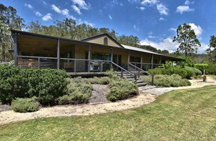 Paynes Crossing Road, Wollombi NSW 2325