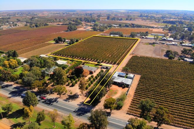 Picture of Lot 7 Renmark Avenue, RENMARK SA 5341