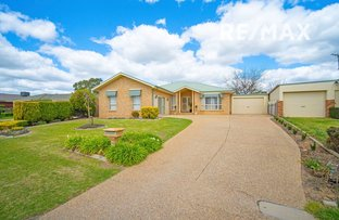 Picture of 7 Gidgee Place, Glenfield Park NSW 2650