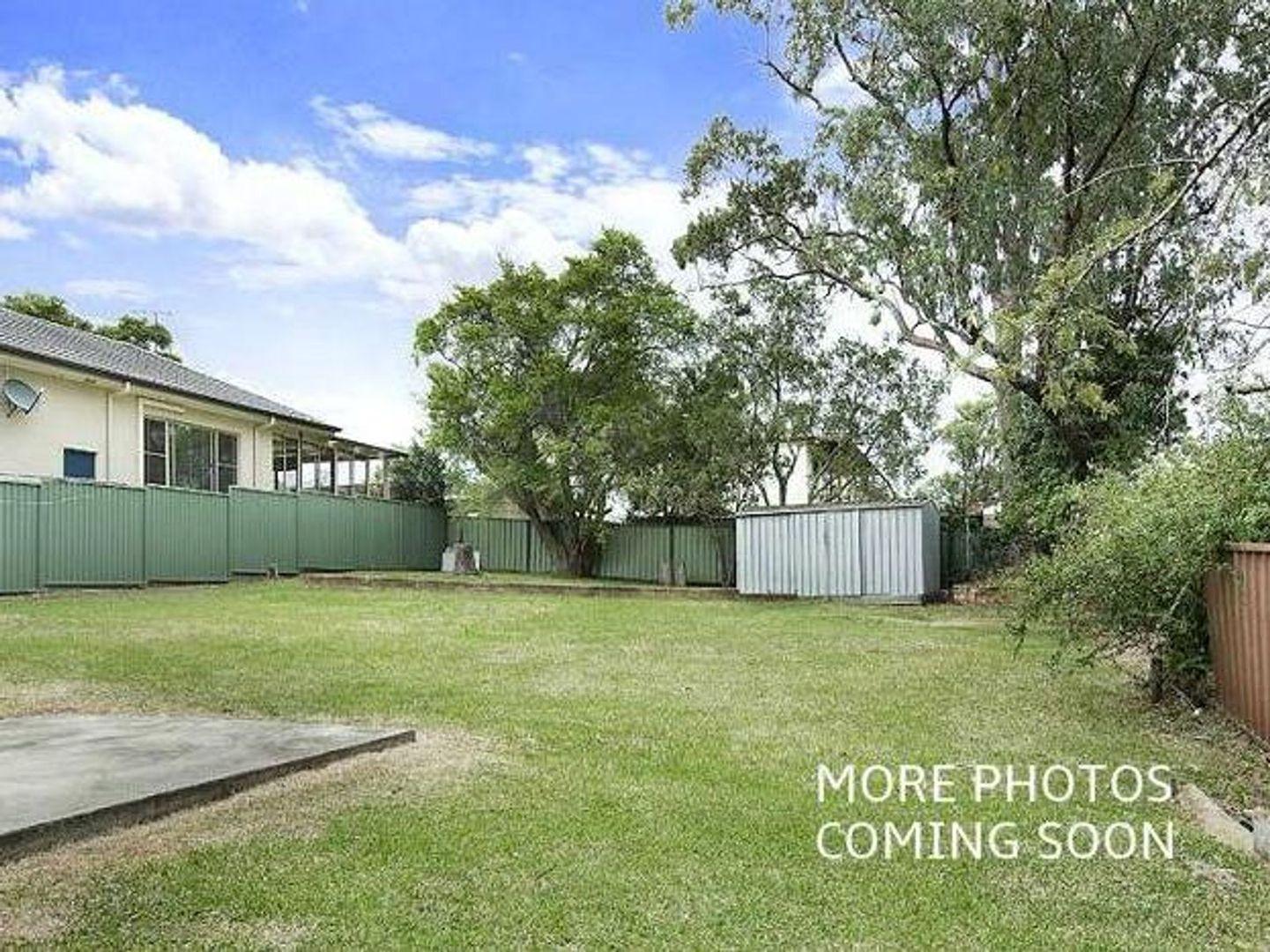18 Overhill Road, Rathmines NSW 2283, Image 2