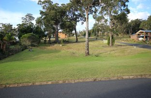 Picture of Boydtown NSW 2551