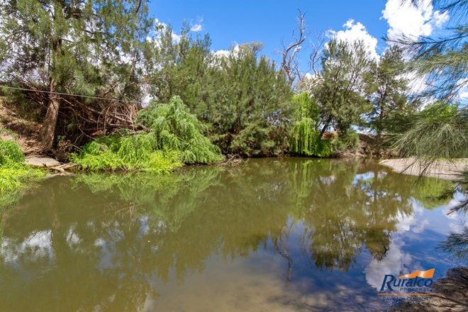 """Picture of """"Galloway"""" 1795 Manilla Road, TAMWORTH NSW 2340"""