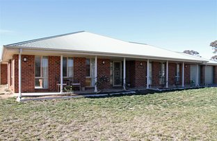 Picture of 8 Red Gum Drive, Manton NSW 2582