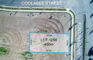 Lot 1256 Fontana Drive, Box Hill NSW 2765