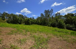 Picture of Lot 3/16 Glenkeith Pl, Eudlo QLD 4554