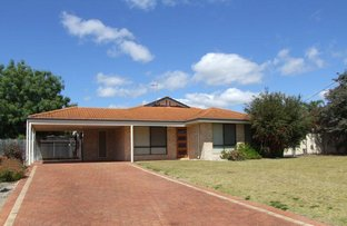 Picture of 14 Russell Court, Donnybrook WA 6239