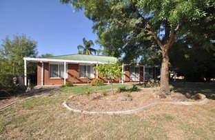 Picture of 1 Buckland  Court, Burrumbuttock NSW 2642