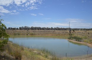 Picture of Lot 2 Snelsons Lane, Gulgong NSW 2852