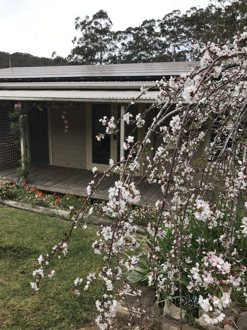 1/250 Wattle Tree Road, Holgate NSW 2250, Image 1