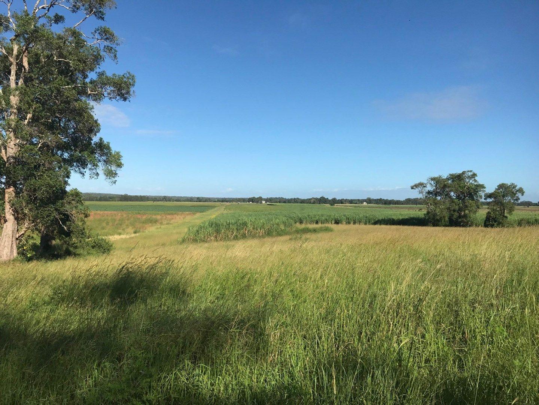 260 Bungawalbin-Whiporie Road, Bungawalbin NSW 2469, Image 0