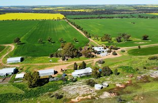 Picture of 5412 Dowerin - Meckering Road, Meckering WA 6405