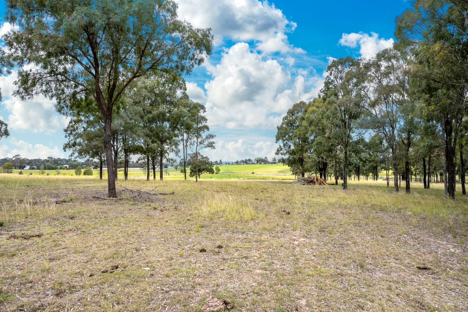 Lot 12 Glendon Road, Singleton NSW 2330, Image 2