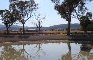 Picture of Leharve 19 smith rd, Scone NSW 2337