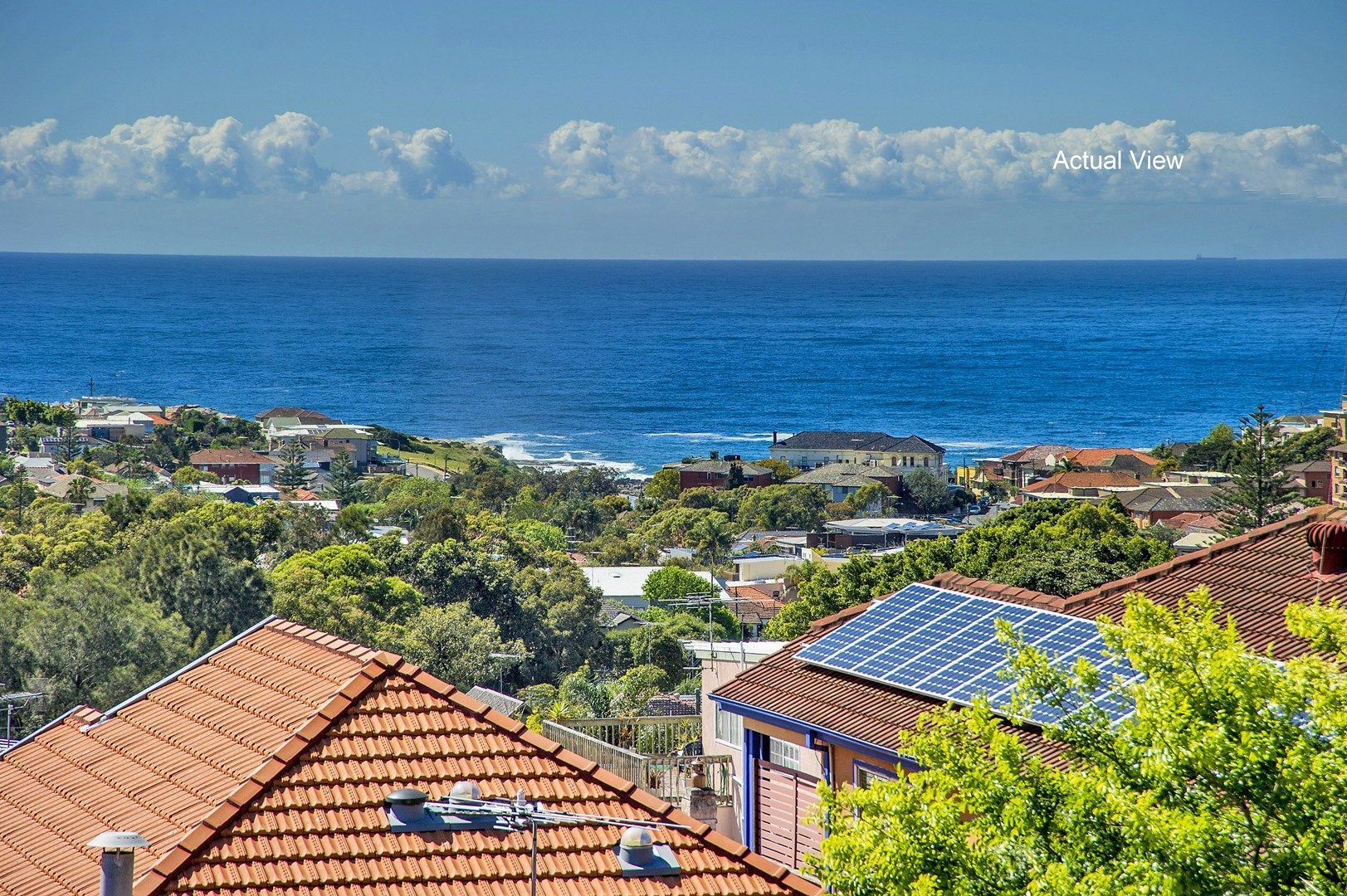 3 Seaview Street, Clovelly NSW 2031, Image 0