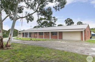 Picture of 863 Staffordshire Reef Road, Berringa VIC 3351