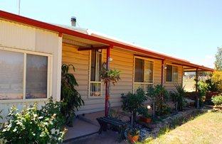 Picture of 447 Dilladerry Road, Tomingley NSW 2869