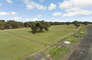 Picture of 40 Yellow Gum Road, Teesdale VIC 3328