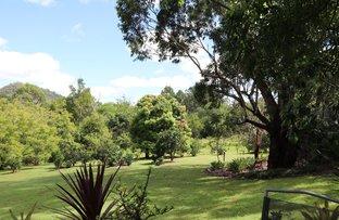 Picture of 447 Gwynne Road, Georgica NSW 2480