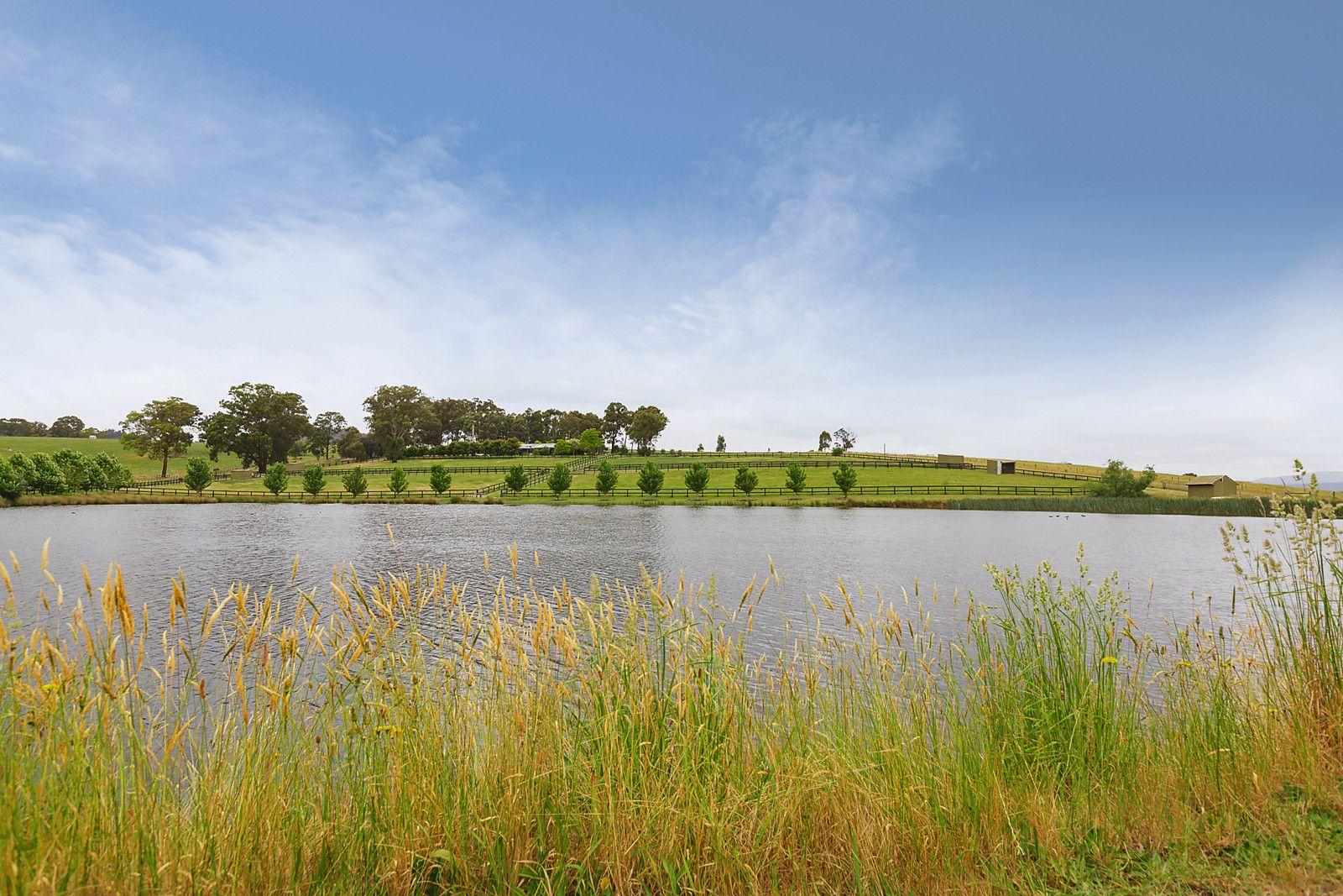 Dixons Creek VIC 3775, Image 2