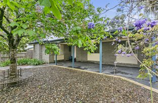 Picture of 3 Roma Avenue, Badger Creek VIC 3777