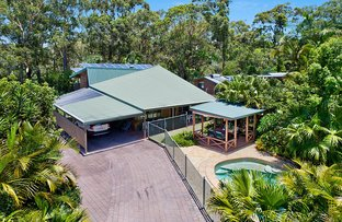 Picture of 3 Kalanda Court, Dicky Beach QLD 4551