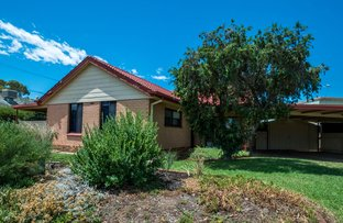 Picture of 3 Jarman Tce, Flinders Park SA 5025