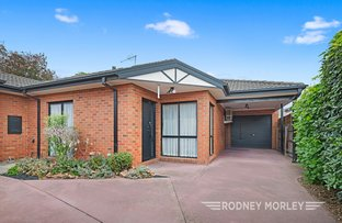 Picture of 21A Burgess Street, Bentleigh VIC 3204