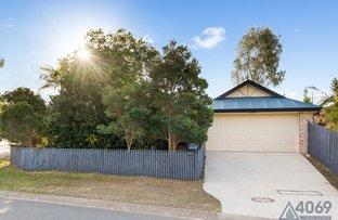 5 Cedrela Street, Moggill QLD 4070