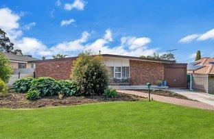 Picture of 179 Kelly Road, Modbury North SA 5092