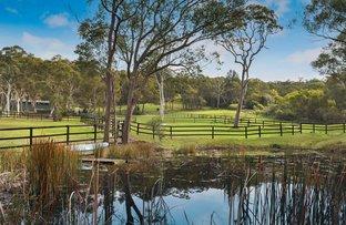 Picture of 2133 Peats Ridge Road, Calga NSW 2250