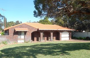 Picture of 23 Dinsdale Place, Hamersley WA 6022