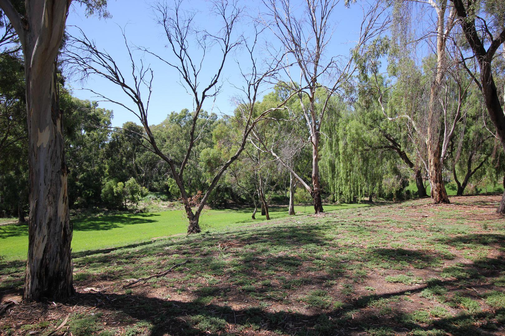 42 Greville Aveune, Flinders Park SA 5025, Image 1