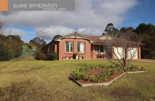 Picture of 19 Jasmine St, Colo Vale NSW 2575
