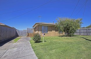13 Hereford Drive, Belmont VIC 3216