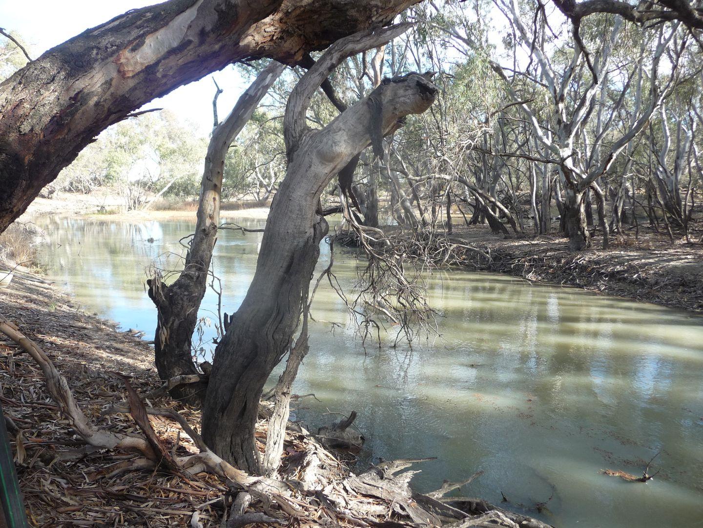 31 Conargo Road, Jerilderie NSW 2716, Image 0