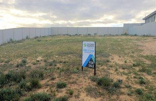 Picture of 2 (Lot 1) Preiss Street, Mannum SA 5238